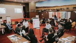 UNDP Mongolia facilitates multi stakeholder workshop to address the key challenges facing Mongolia's cashmere industry post COVID-19 6